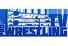 Pro Wrestling TV